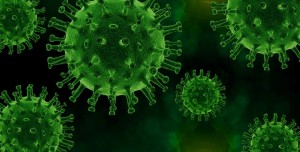 Yeni Koronavirüs Salgınına Yol Açabilecek Memeli Türleri Tespit Edildi