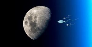 Ay'a 6,7 Milyon Sperm Gönderilecek! İşte Sebebi