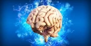 İnsan Beyninin Büyüklüğündeki Sır Ortaya Çıktı