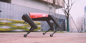 AlphaDog, Boston Dynamics'in Robotuna Rakip Oluyor!