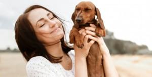 Bazı Köpeklerle Göz Teması Kurmak Neden Daha Kısa Sürer?