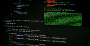 500 Milyon Dolarlık Zarara Sebep Olan Hacker Grubu Yakalandı