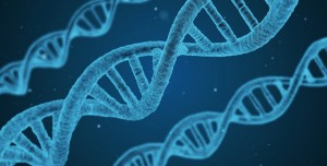 CRISPR Gen Düzenlemesi ile İlk Kez İnsan Tedavi Edildi