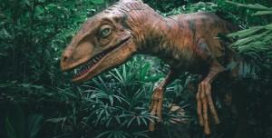 Sigara İçer Gibi Nefes Alan Dinozor Keşfedildi