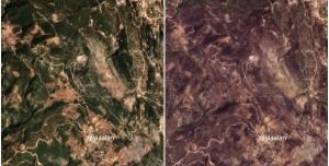 Orman Yangınlarının Öncesi ve Sonrası Uzaydan Görüntülendi
