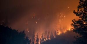 Orman Yangınlarının Aynı Anda Başlama Sebebi Açıklandı