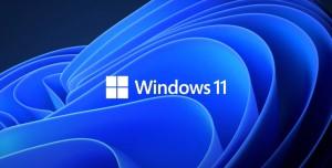 Windows 11 Anketi: Kullanıcıların Yarısı Hayal Kırıklığı Yaşadı