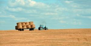 5,9 Milyon Dolarlık Fidye Saldırısı Gıda Kıtlığına Yol Açabilir
