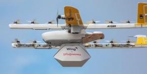 Kargo Teslimat Drone'u Karga Saldırısına Uğradı (Video)