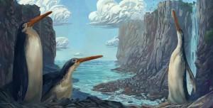 Yeni Zelandalı Çocuklar Uzun Bacaklı Dev Penguen Keşfetti