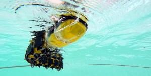 400 Milyon Yıllık Parazit Balıkları İncelemek İçin Robot Tasarlandı
