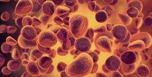 35 Trilyon Hücreyi Detaylı Olarak Araştıran Human Cell Atlas Projesi Başladı