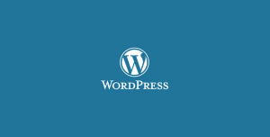 2015'in En İyi WordPress Eklentileri
