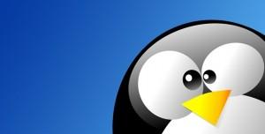 Bilmeniz Gereken Temel Linux Komutları