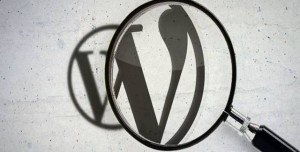 Bir Sitenin Wordpress Olup Olmadığı Nasıl Anlarsınız?