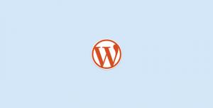 Birbirinden Şık 9 WordPress Teması