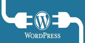 WordPress Dosyalarının CHMOD Değerleri Nasıl Olmalıdır?