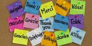 Android İçin Çevrimdışı Yabancı Dil Sözlük ve Fiil Çekimleri Uygulamaları