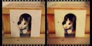 Pixlr'da Fotoğraflara Efekt Verme