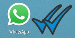 WhatsApp Mavi Tik Özelliğinden Kurtulma