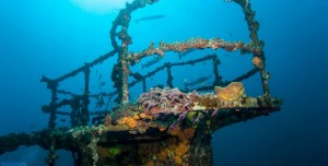 Deniz Kalıntıları Teması