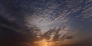 Gökyüzü Dinamik Teması