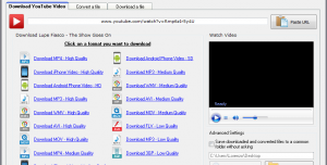 Quick YouTube Downloader