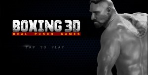 Boxing 3D - Real Punch