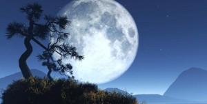 Evrenle İlgili Ufkunuzu Açacak 22 Çarpıcı Gerçek