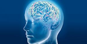 Yeni Beyin Simülasyonu, Parkinson Hastalığının İlacı Olacak