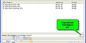 Freez Flv to AVI/MPEG/WMV Converter