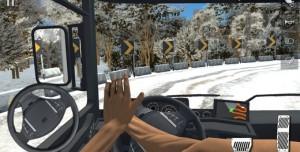 Pro Truck Driver