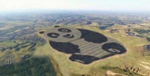 Dev Panda 50 MW Güneş Enerjisi Üretiyor