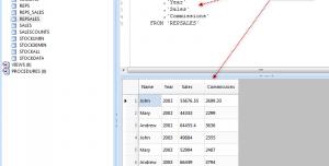 Database .NET