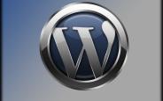 Poedit ile Wordpress Tema Türkçeleştirme