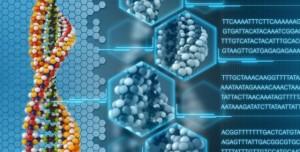 Microsoft'un Yeni Şifreleme Algoritması Sağlık Sektörüne Yardımcı Olacak