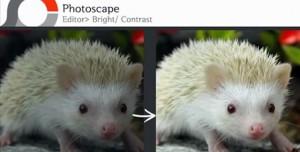 PhotoScape - Parlaklık ve Kontrast Ayarı