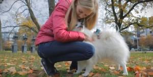 Köpeğinizi iPhone veya iPad'inizle Kontrol Edin: Pet-Remote