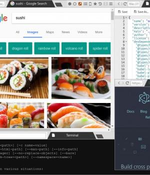 Sushi Browser - 1