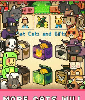 Kitty Cute Cats 5 - 5