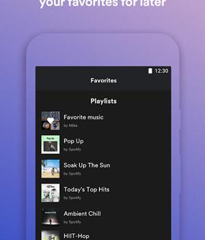 Spotify Lite 4 - 4