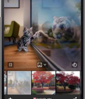InstaQuote Ekran Görüntüleri - 7