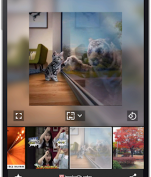 InstaQuote Ekran Görüntüleri - 8