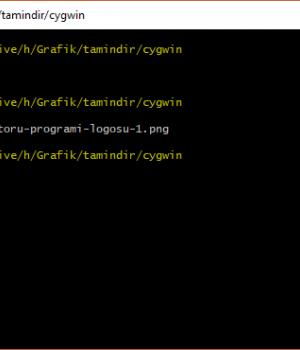 Cygwin Windows'ta Linux Emülatörü Kullanmak 1 - 1