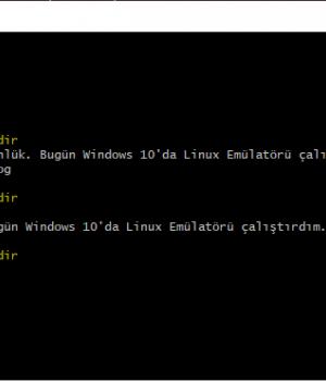 Cygwin Windows'ta Linux Emülatörü Kullanmak 4 - 4
