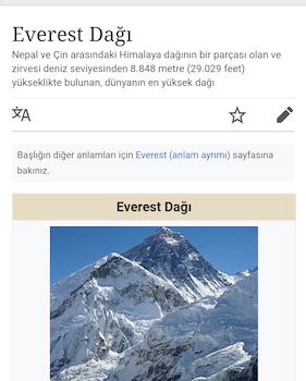 Google Go Ekran Görüntüleri - 5
