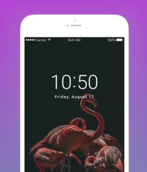 Pexels Ekran Görüntüleri - 7