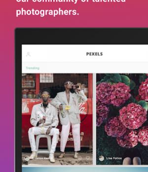 Pexels Ekran Görüntüleri - 16