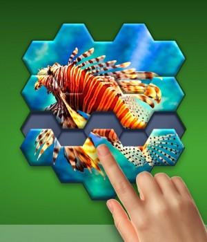 Hexa Jigsaw Puzzle Ekran Görüntüleri - 2