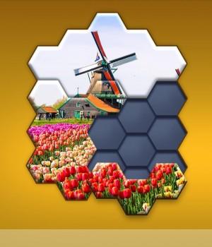 Hexa Jigsaw Puzzle Ekran Görüntüleri - 3